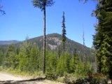 Boulder Mountain ORV