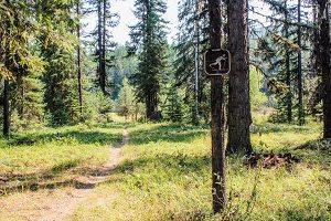 lake leo trail