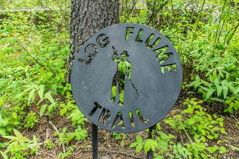 Log Flume 2 sm