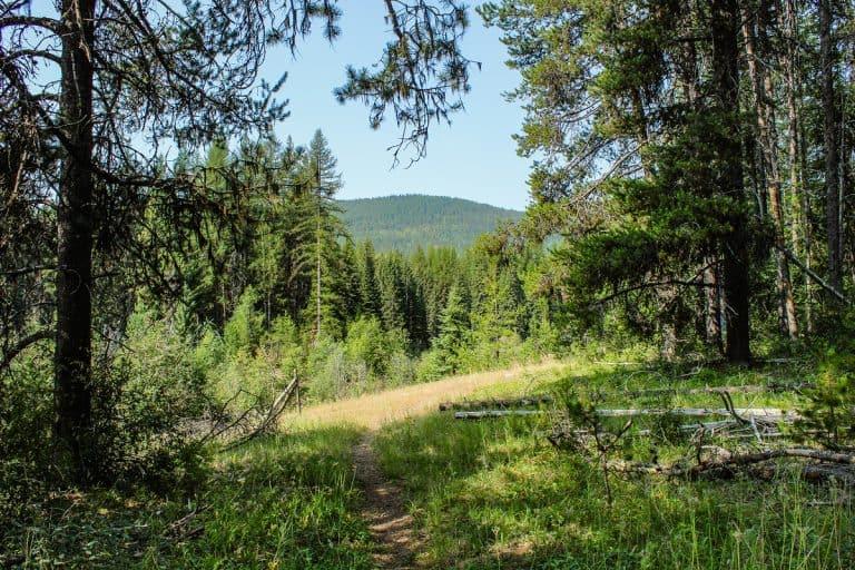 meadow creek trail 14 sm