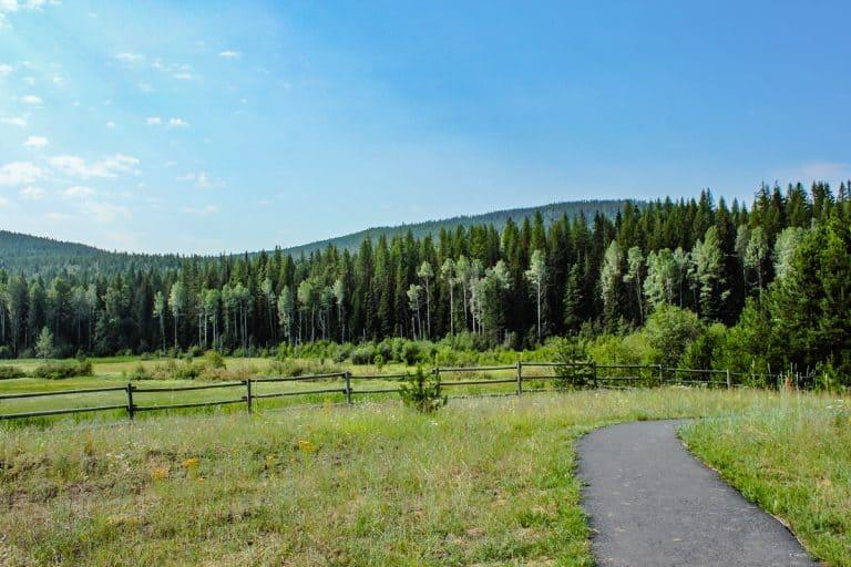meadow creek trail 2 sm