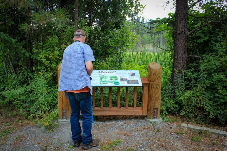 Interpretive sign LPO McDowell Marsh-sm