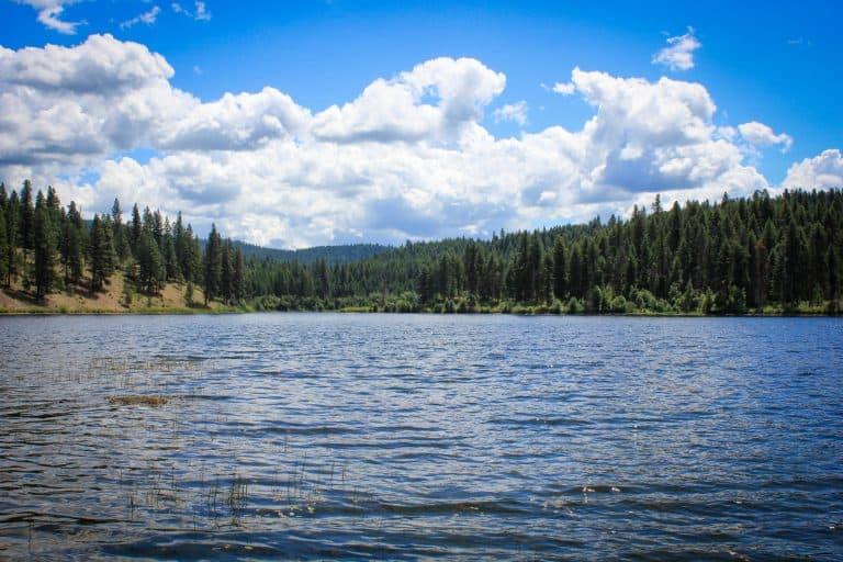 McDowell Lake LPONWR 2-sm