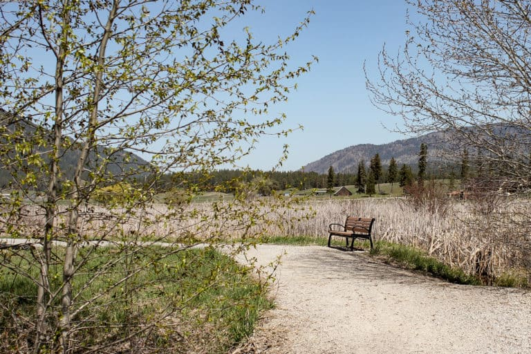 colville rotary trail 6