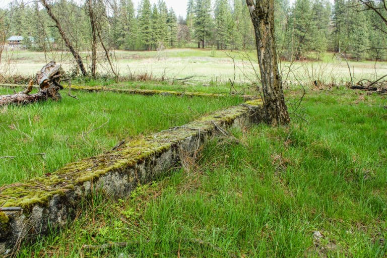 kettle falls campground trail 10