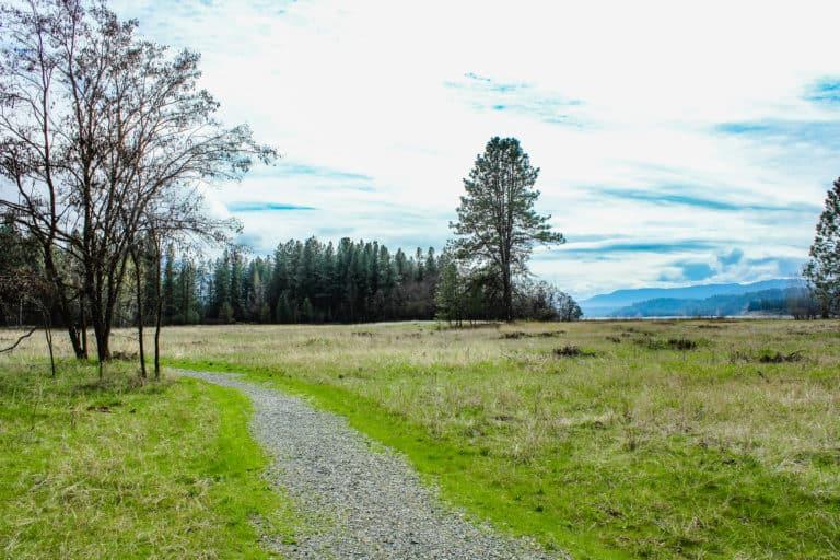 kettle falls recreation area trail
