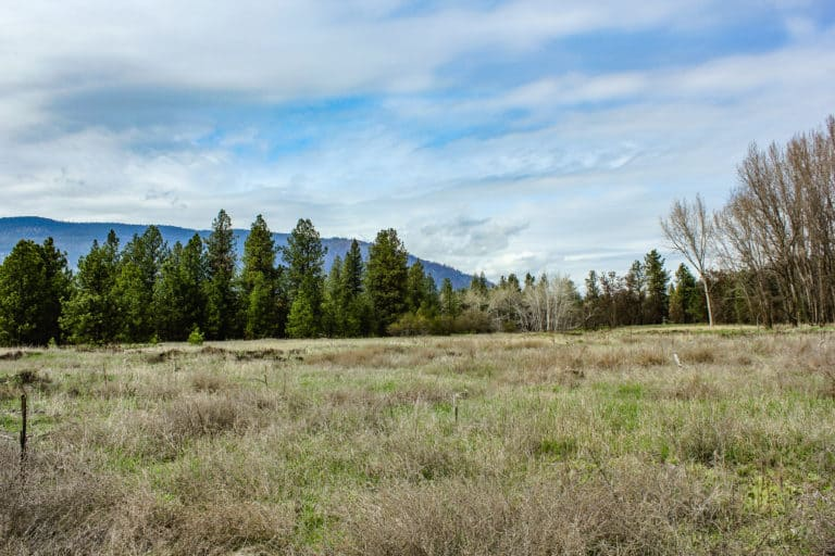 kettle falls campground trail 14