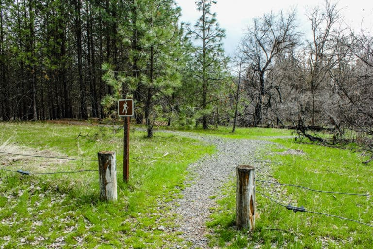 kettle falls campground trail 21