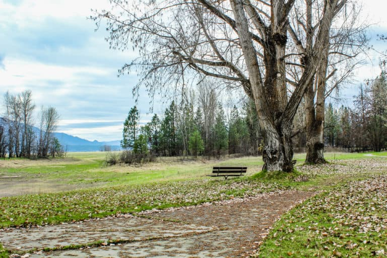 kettle falls campground trail 23