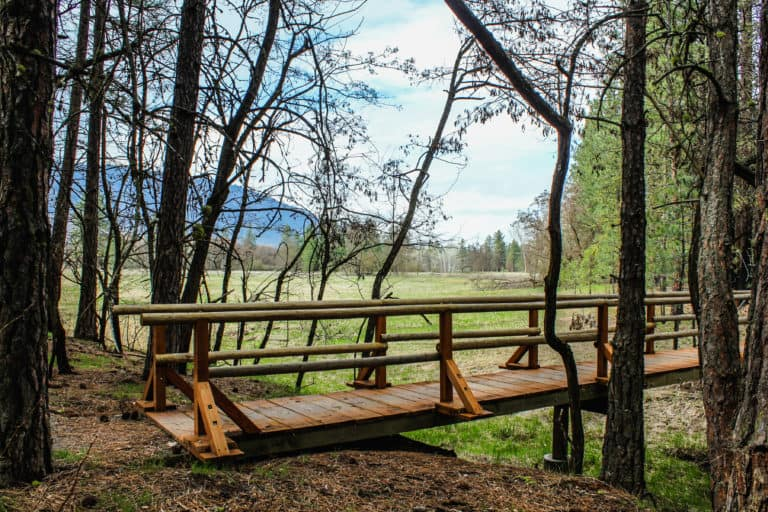 kettle falls campground trail 26