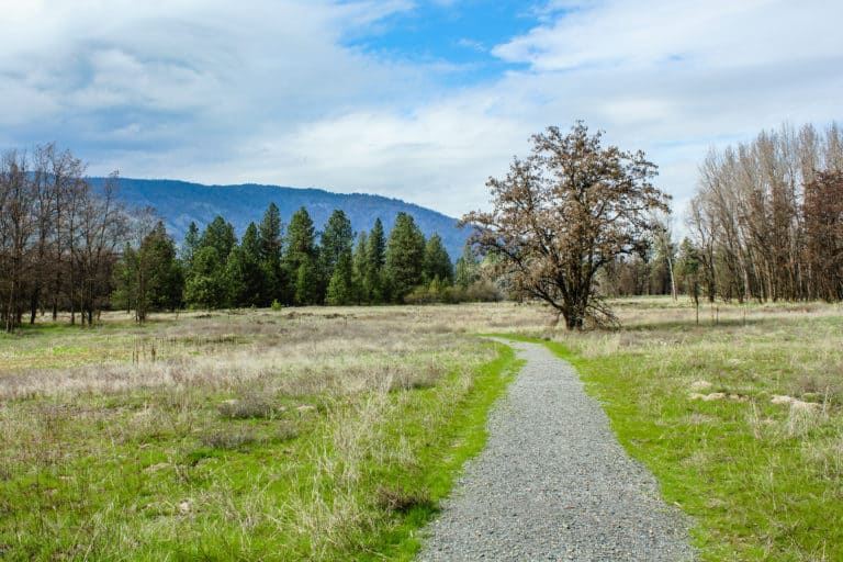 kettle falls campground trail 27