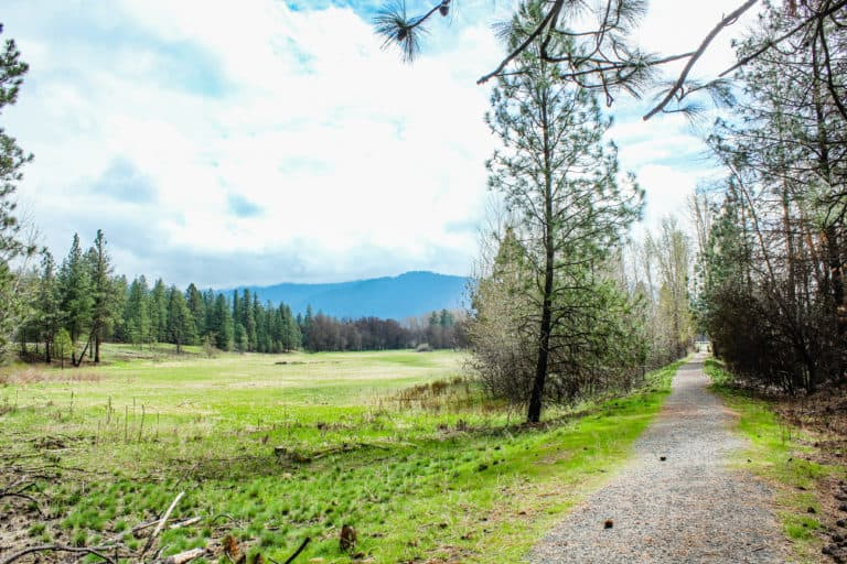 kettle falls campground trail 5