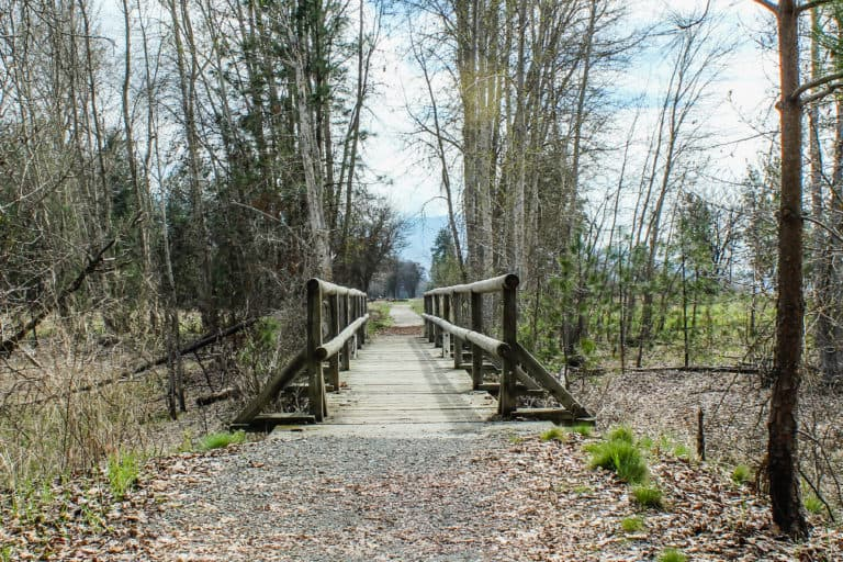 kettle falls campground trail 6