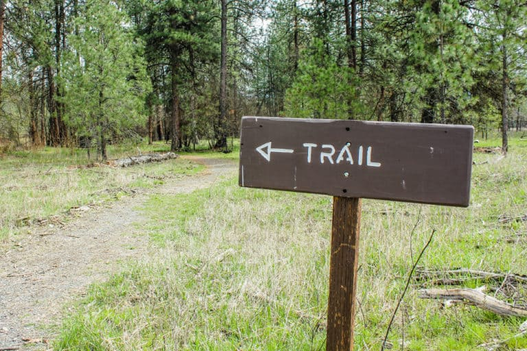 kettle falls campground trail 8