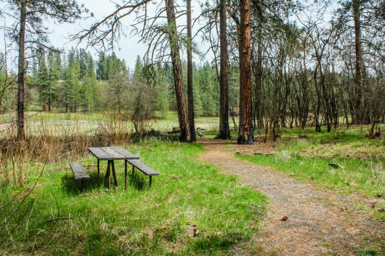 kettle falls campground trail 9