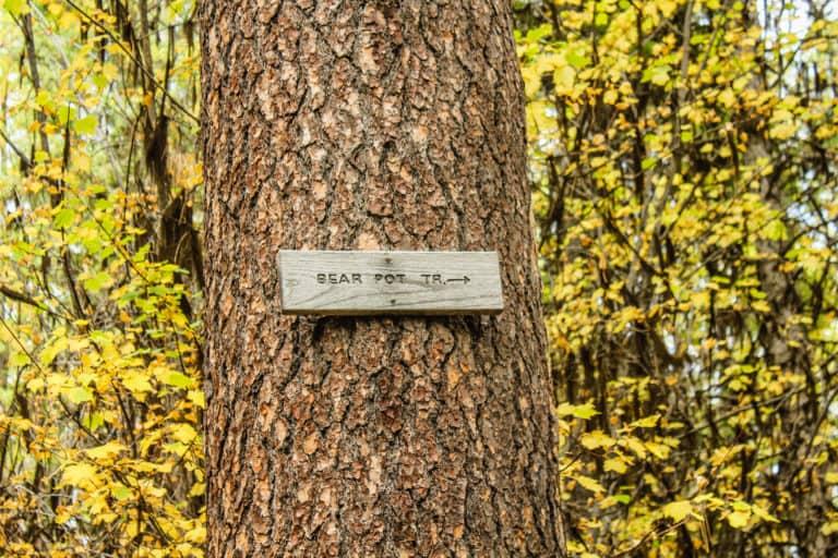 bear pot trail 23