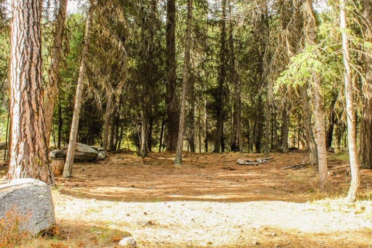 bear pot trail 4