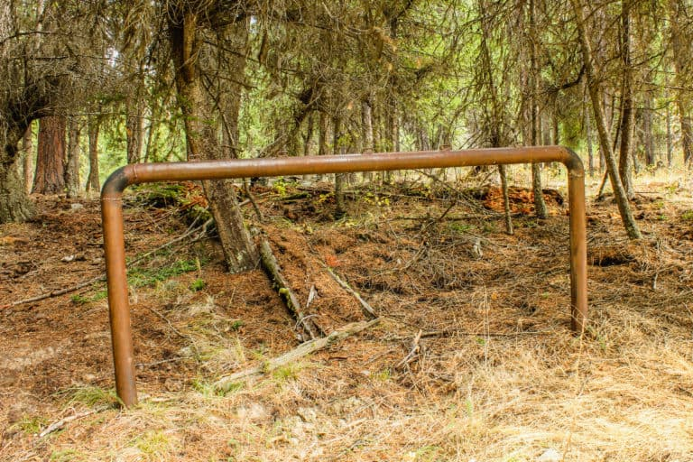 bear pot trail 5