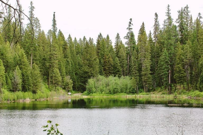 long lake 4