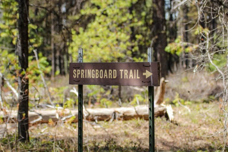 springboard trail 13