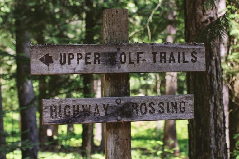 wolf trails 4