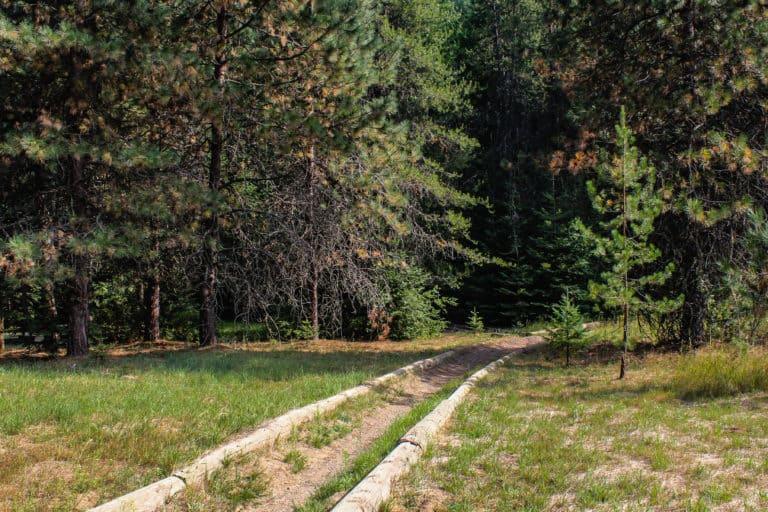 batey bould trail 3