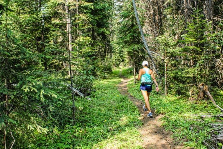 big meadow lake trail