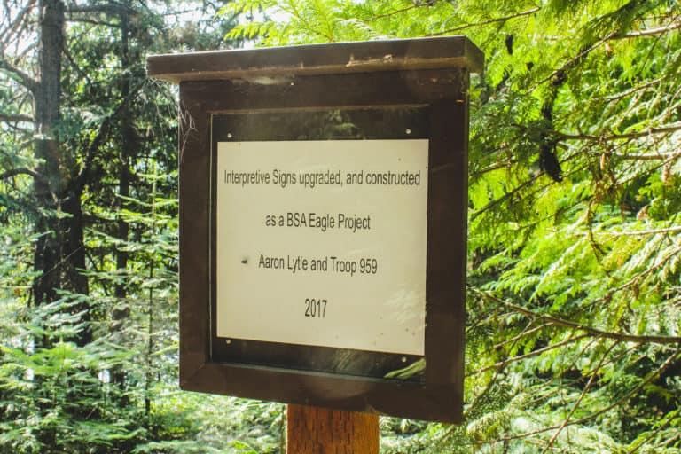 big meadow lakeside trail 2