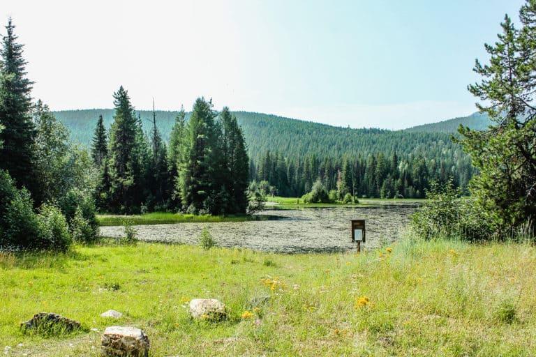 big meadow trail