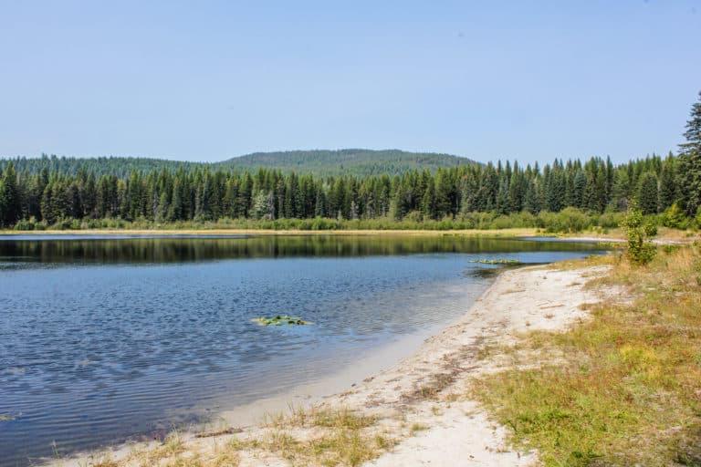 lake leo trail 6