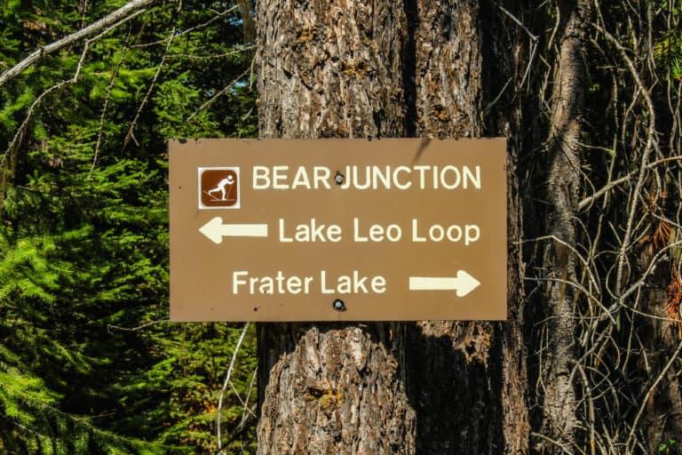 lake leo trail 7